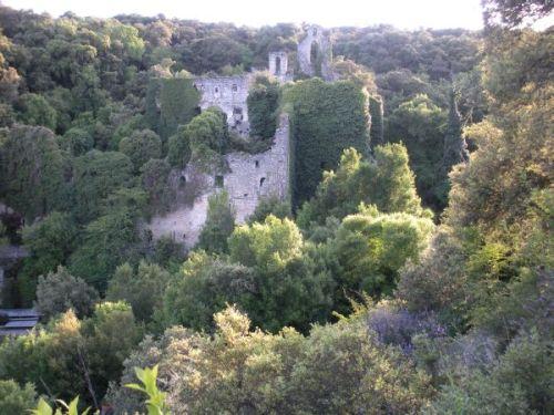 Foto 7 - Ruinas del Convento de Santa Catalina